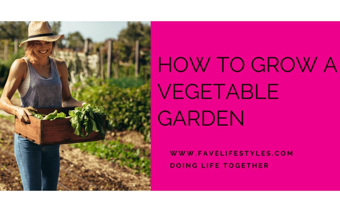 How to Grow A Vegetable Garden
