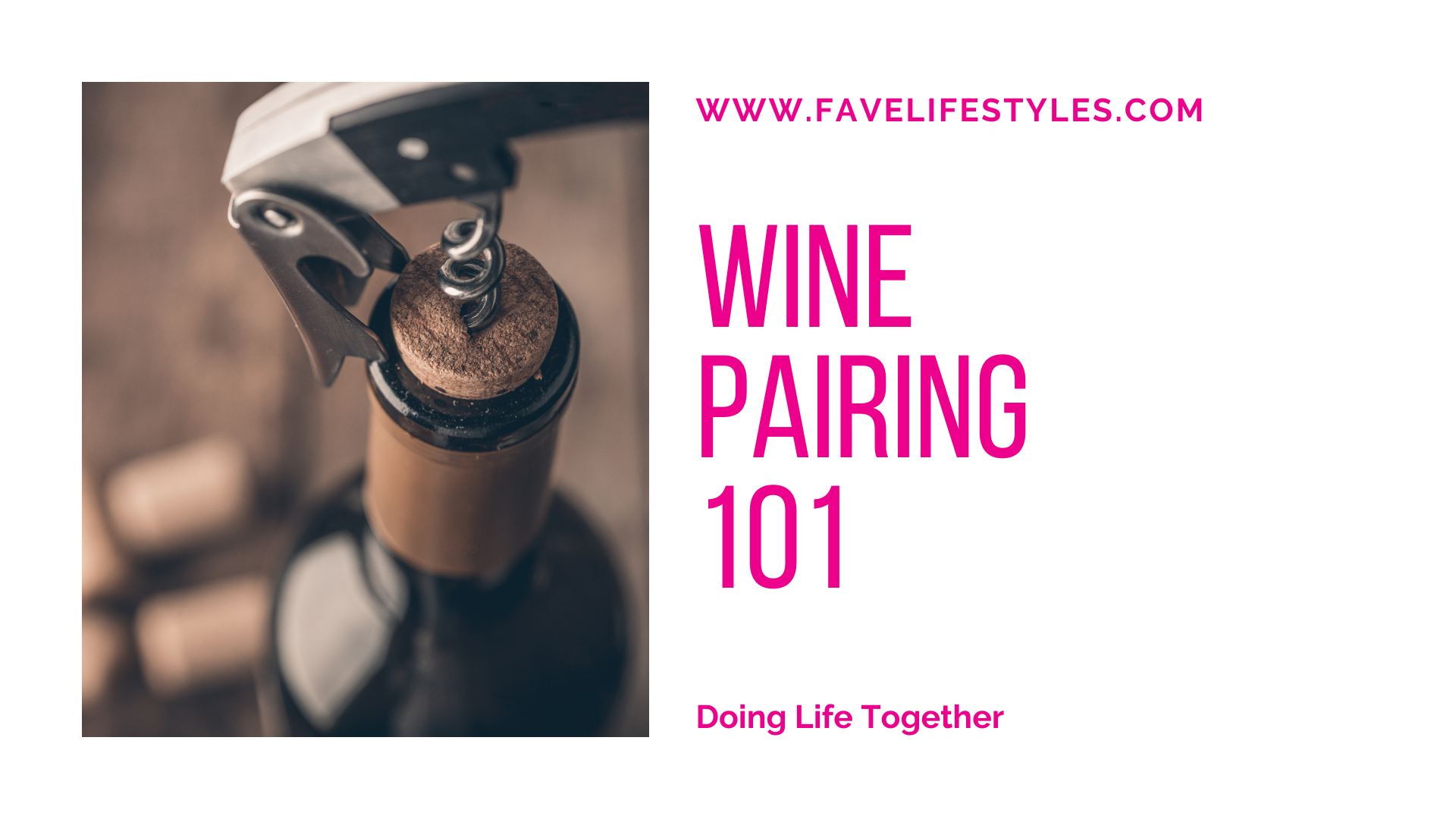 Wine Pairing 101