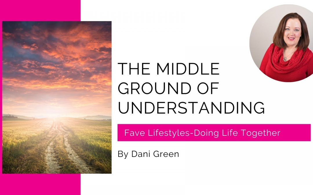 The Middle Ground of Understanding